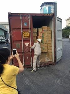 Hình Ảnh Kiểm Tra Niêm Phong Container Tại Cảng