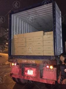 Hình Ảnh Kiểm Tra Niêm Phong Container Trên Đường Vận Chuyển